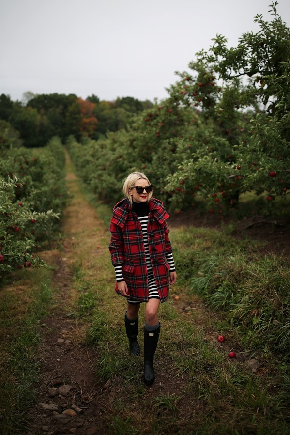 Plaid Jacket Apple Picking
