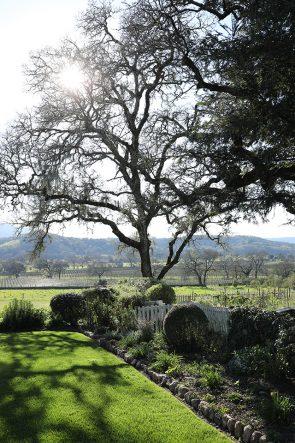 Atlantic Pacific Blogger SF Bay Area // Sonoma Wine Country