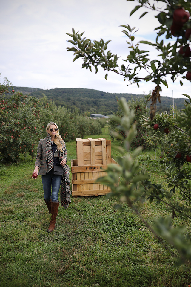 Atlantic Pacific Blog // Blair Eadie apple picking!