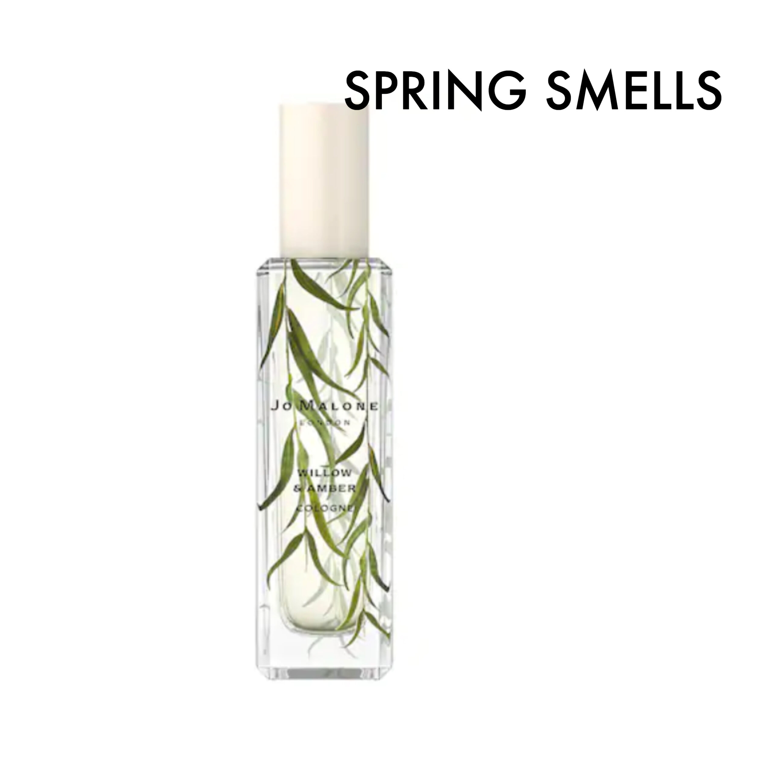 spring beauty items atlantic-pacific